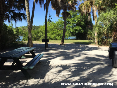 Best pet friendly campgrounds in Florida - Fort De Soto