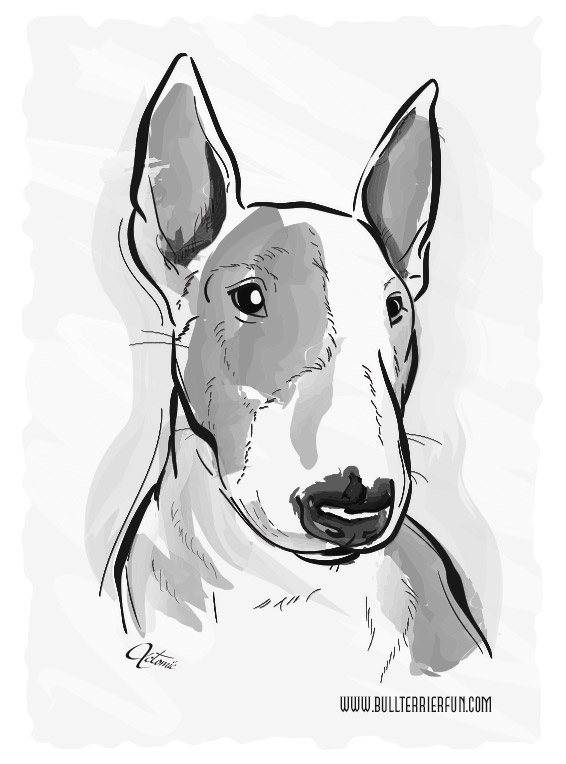 Bull Terrier water color painting