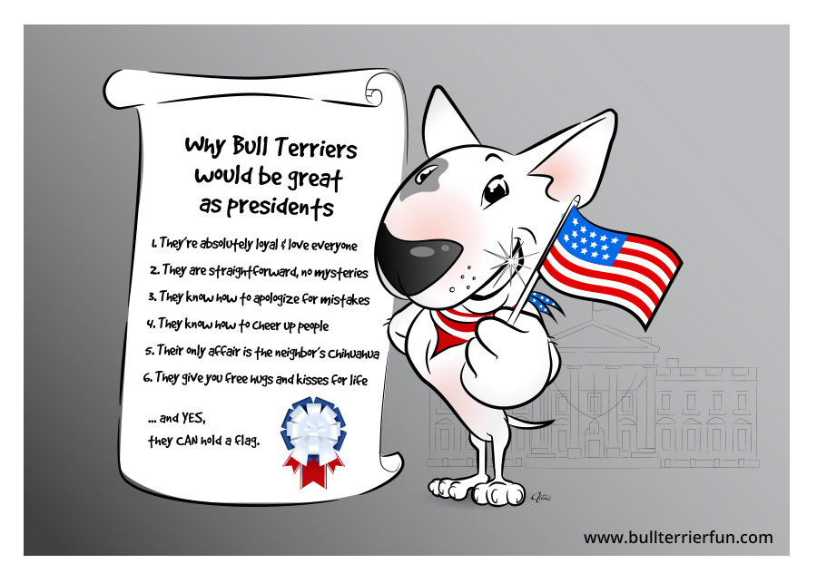 Why Bull Terriers would be a great president
