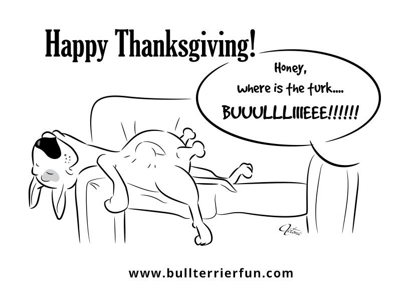 bullterrierfun2016-thanksgiving