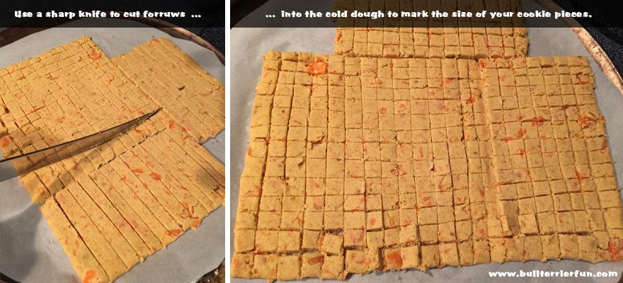 Homemade Dog Treats: Carrot Coconut Mini Cookies
