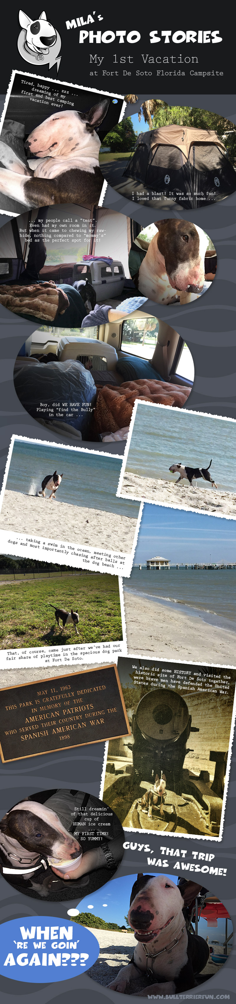 Best pet friendly campgrounds in Florida: Fort De Soto