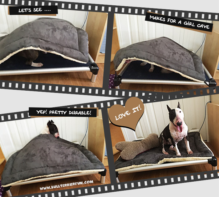 Dog beds for Bull Terriers