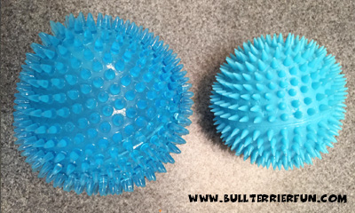 Spiky balls for dogs